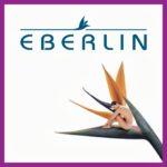 Eberlin-cosmética