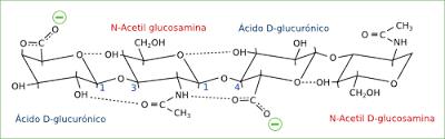 acido-hialuronico-jpg-ii